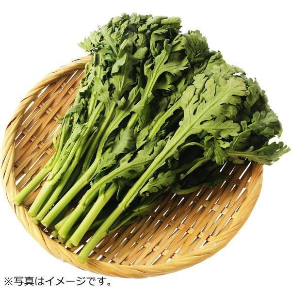 千葉県などの国内産 春菊 1袋