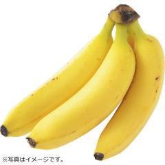 バナナ 1パック フィリピン産
