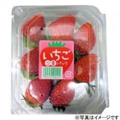 栃木県などの国内産 いちご少量 1パック