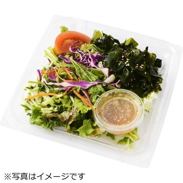 <期間限定ミールキット&サラダセット>野菜が美味しい!彩野菜と白身魚の黒酢あんかけ(2人前)&旨塩チョレギサラダ2人前