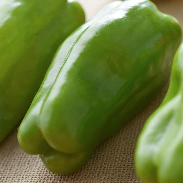 常備野菜セット 1箱【バイヤー厳選】『顔が見える野菜。』