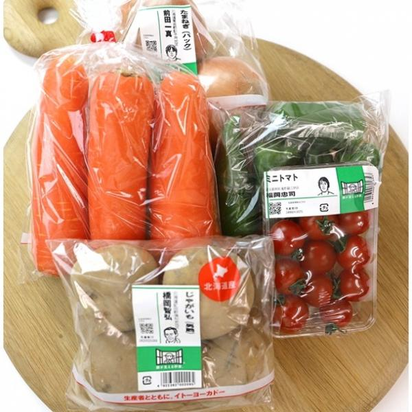 常備野菜(5点)1セット 国内産原料使用。【バイヤー厳選】