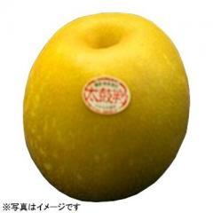 長野県産 南水梨 1コ