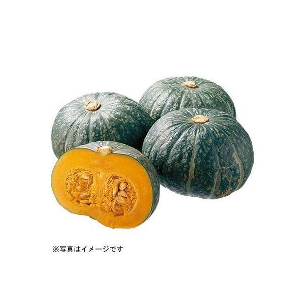 かぼちゃ1カット(約400g) 秋田県などの国内産