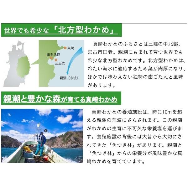 真崎わかめ 100g【岩手県産原料 『顔が見えるお魚。』】
