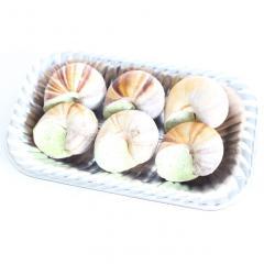 【【冷凍でお届け】加熱用殻付きエスカルゴ(バター入)6個入 -5℃保存