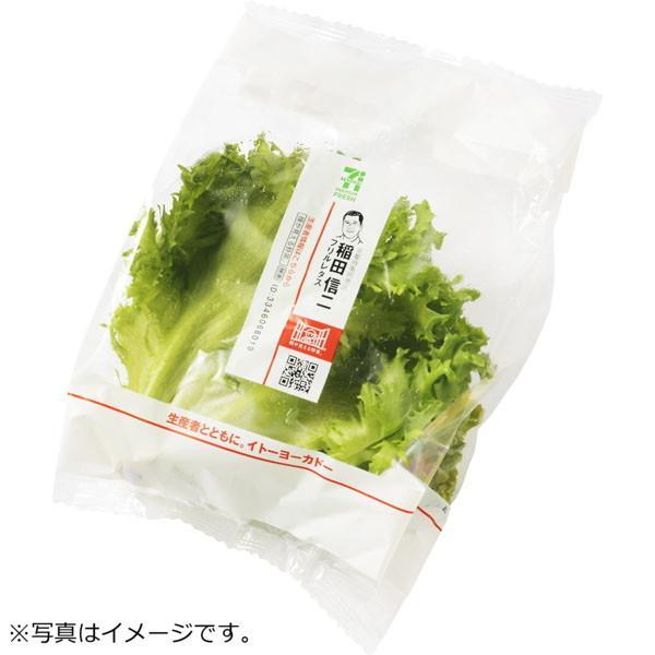フリルレタス 1コ セブンプレミアムフレッシュ『顔が見える野菜。』京都府産