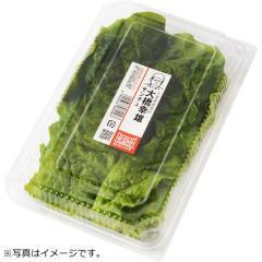 サンチュ 1パック(約10枚)千葉県などの国内産『顔が見える野菜。』