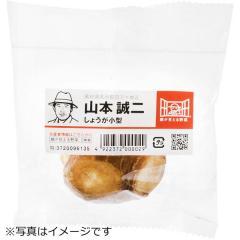 高知県などの国内産 『顔が見える野菜。』 しょうが 小型 1袋