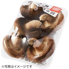 北海道などの国内産 『顔が見える野菜。』 生しいたけ 中型 1パック(菌床栽培) L・Mサイズ込み (約100g)