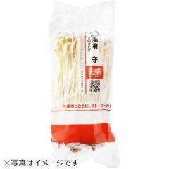 長野県産 『顔が見える野菜。』 えのき茸 1袋
