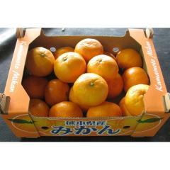 みかん 1箱(約2Kg)熊本県産