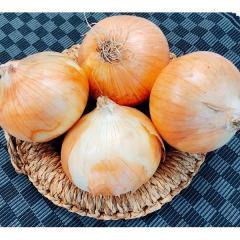 たまねぎ 1袋(3~4コ)北海道産