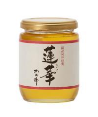 国産九州レンゲ蜂蜜300g 国産 はちみつ
