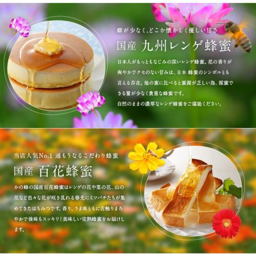 【クーポン利用で送料無料】国産蜂蜜ギフト500g×2 国産 はちみつ