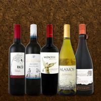 【送料無料】デイリー新世界第5弾!とにかくコスパの高いワインを集めたスタッフ厳選5本セット!