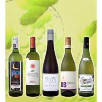 【送料無料】初夏に飲みたい、アロマたっぷりの白ワイン5本セット!