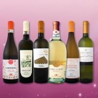 【送料無料】≪バラエティ豊かな個性を満喫!≫特大感謝の激旨イタリアワイン6本セット!