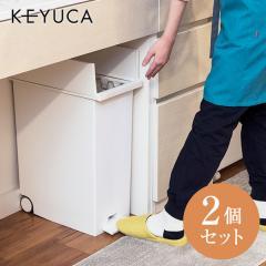KEYUCA(ケユカ) [2個セット] arrots ダストボックス ゴミ箱 27L