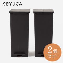 KEYUCA(ケユカ) WEB限定 arrots ダストボックス ゴミ箱 27L ブラック 2個セット