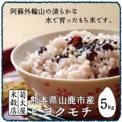 もち米 5kg「29年産 熊本県山鹿市産 ヒヨクモチ」