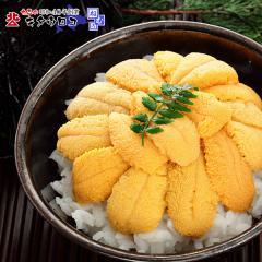 【送料無料】北海道産 ムラサキウニ 80gを朝むきたてにて直送! ※塩水パック