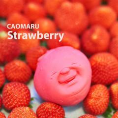 +d CAOMARU Strawberry | カオマル ストロベリー アッシュコンセプト フルーツ ブドウ ストレス解消