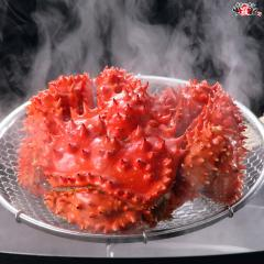 カニ好き必見!幻とも言われる希少な花咲がに特大サイズ1.5kg前後×1ハイ(オス)【花咲蟹】【花咲ガニ】
