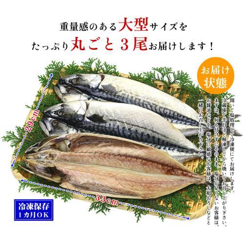 【送料無料】脂がしたたる肉厚とろサバ開き×3枚入【鯖】【さば】【干物】【一夜干し】