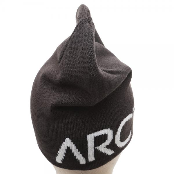 アークテリクス(ARC'TERYX) Word Head Long Toque L06947100 Carbon Copy/Trillium(Men's)