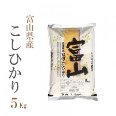 新米 米 5kg 精白米 コシヒカリ 富山県産 令和2年産 1等米 100% お歳暮