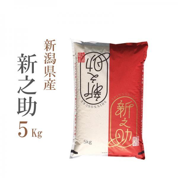 精白米 5kg 新潟県 新之助 しんのすけ 5kg こだわり満足 1等米 100%