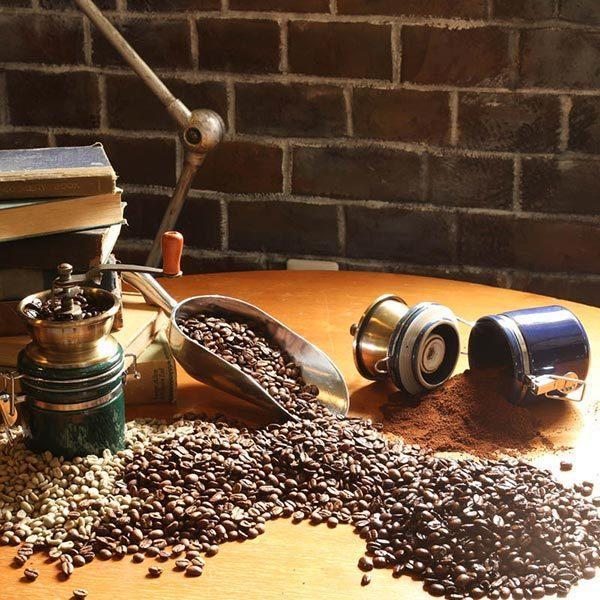 コーヒーミル テラ ダルトン DULTON ブルー