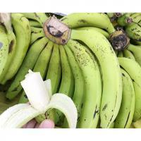 【徳之島】三尺バナナ 2kg【MPCP_FD】