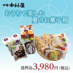 新宿中村屋 おうちで楽しむ夏のお菓子箱【焼菓子と夏の涼菓セット】【期間限定】