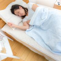 【送料無料】 【昭和西川】 今治パイルガーゼケット 140×190cm リコリス BL 快眠