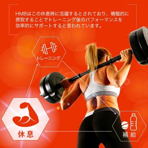 送料無料 HMBカルシウム(3個セット・180粒)HMB サプリメント サプリ カルシウム 必須アミノ酸 ロイシン ビタミン スポーツ