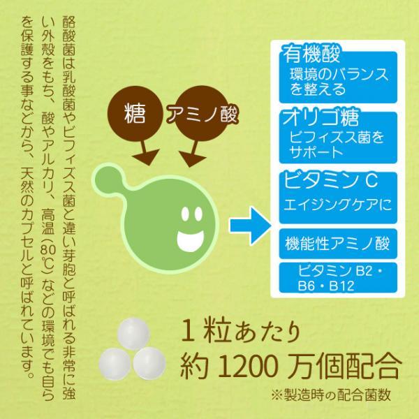 送料無料 酪酸菌(3個セット・約3ヶ月分)酪酸菌 サプリ カルボン酸 短鎖脂肪酸 有機酸 オリゴ糖 機能性アミノ酸 サプリメント