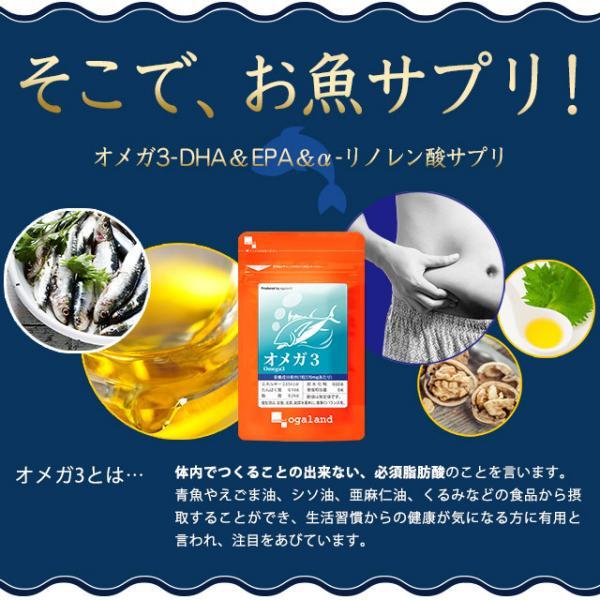 送料無料 オメガ3(約6ヶ月分) サプリメント サプリ DHA EPA 亜麻仁油 アマニ油 脂肪酸 ドコサヘキサエン酸 健康食品 ダイエット 健康