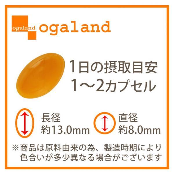 送料無料 プラセンタ(約1ヶ月分) サプリ サプリメント 3,600mg相当を1粒に50倍濃縮! 原液 美容液 よりも手軽で 美容ドリンク より飲みやすい♪ 潤い エイジングケア