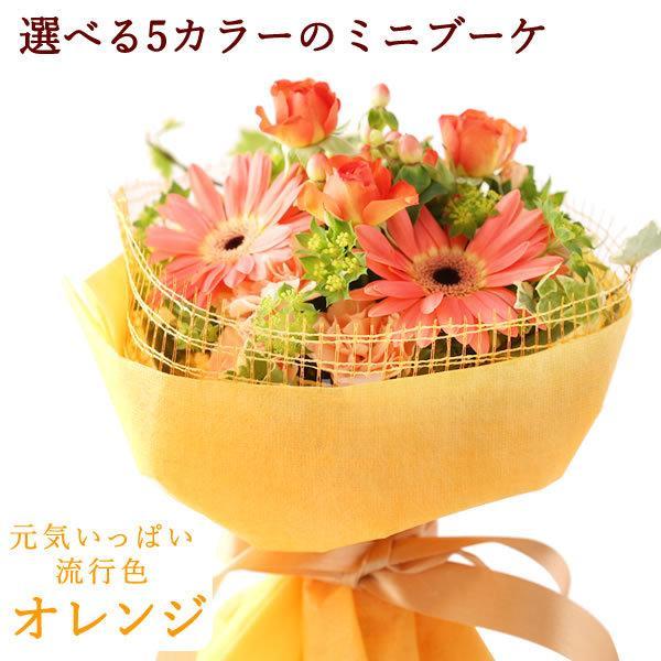 ギフト 送料無料 選べる花束&シフォンケーキセット【ミックスカラー】 ※6/20以降お届け