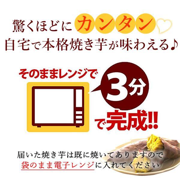 お年賀 2020 お歳暮  ギフト プレゼント お祝い 焼き芋 3本セット
