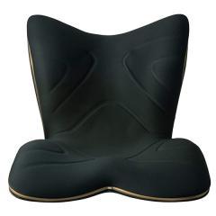 BSPR2004F 骨盤 送料無料 姿勢サポートシート 座椅子 スタイルプレミアム Style PREMIUM 【1000円クーポン有】 クッション MTG正規販売店
