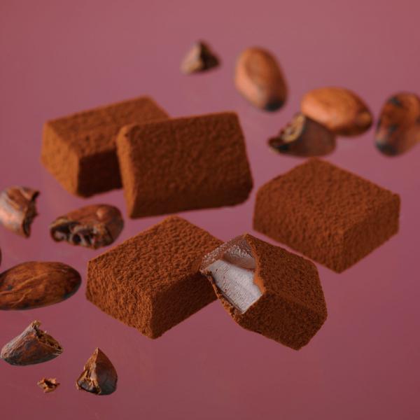 10%OFFクーポン対象商品 ロイズ 生チョコレート[エクアドルスイート] クーポンコード:52RFBAW