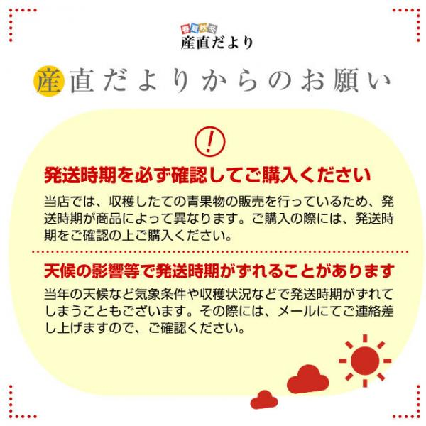 5%OFFクーポン対象商品  山梨県または長野県産 シャインマスカット 1.2キロ (2房から3房入り) 送料無料 ぶどう 葡萄 ※ご購入後3日から12日で発送クーポンコード:V6DZHN5