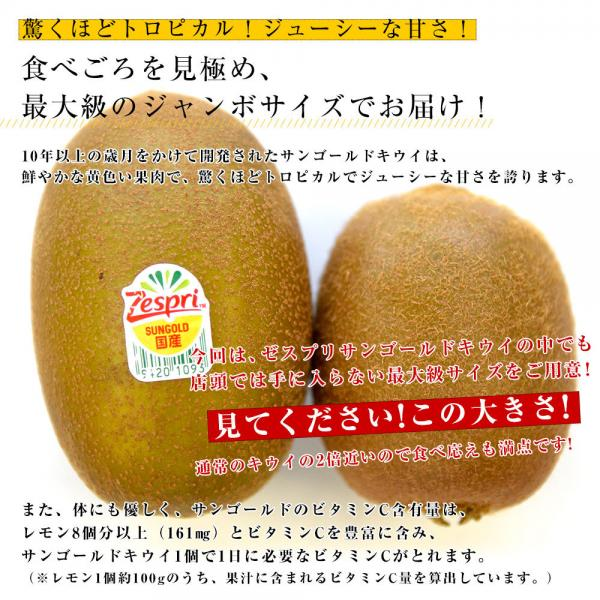 国産 ゼスプリ・キウイフルーツ サンゴールドキウイ ジャンボ 15玉入り化粧箱 (3キロ前後) 送料無料  市場発送