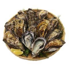 広島県産 牡蠣 殻付き 10個 冷凍便