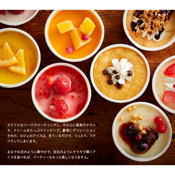 お中元 ギフト 送料無料 アイスクリーム ギフト アイス 銀座 レ ロジェ エギュスキロール (メーカー直送品)*d-M-A-GQ8*
