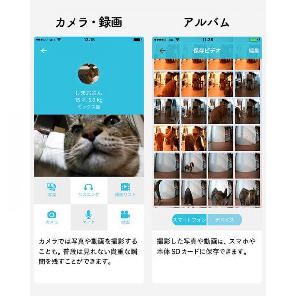 送料無料 犬猫用 スマホ連動型 自動給餌器 カリカリマシーン SP/自動餌やり器 ペット*z-M-karikari-sp-ZM*
