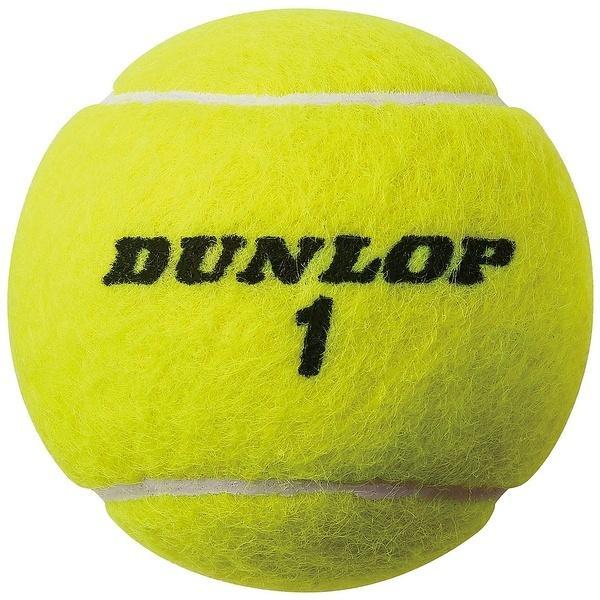 DUNLOP(ダンロップ)ラケットスポーツ テニスボール ダンロップオーストラリアンオープン2ヶ入りボトル ダンロップAO YEL